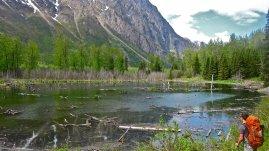 Chugach Mountains, May 2011