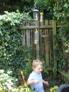 Bird feeding pole with feeders.bird feeders, feeding birds safely in the garden