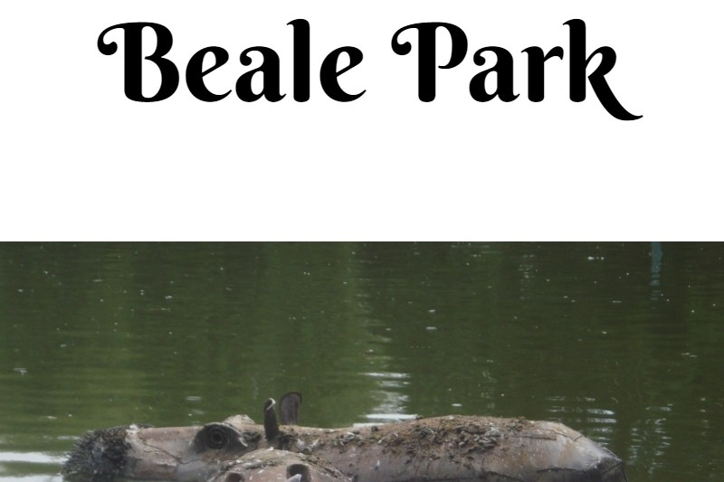 Beale Park