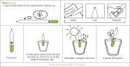 Plant your Pencil