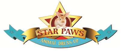 Star Paws Knights Sticker books