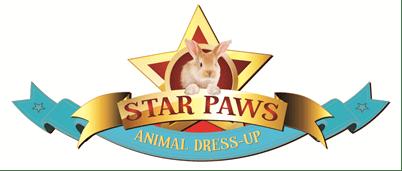Star Paws Knights Sticker books