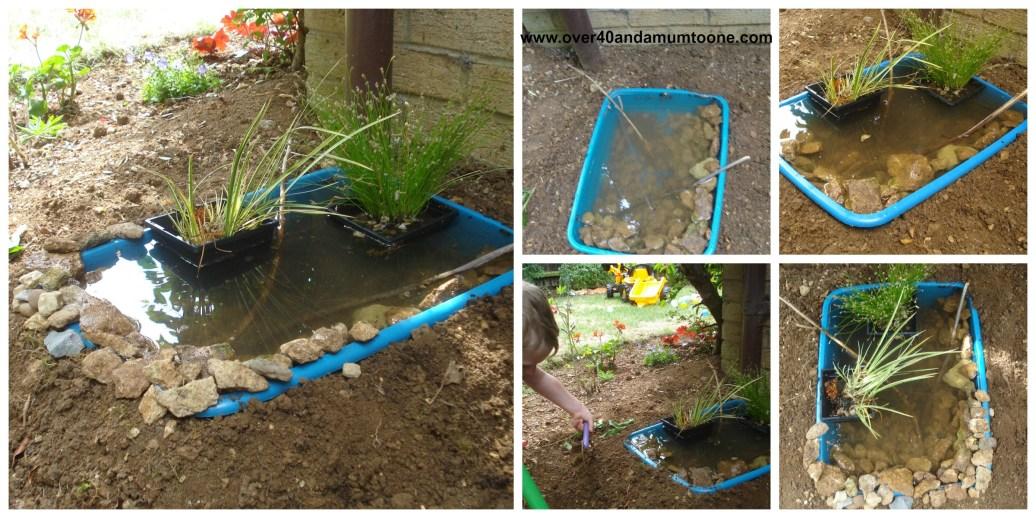 Our wildlife pond challenge