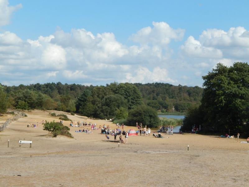 Frensham Ponds