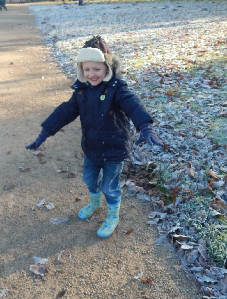 Revisiting Charlecote Park