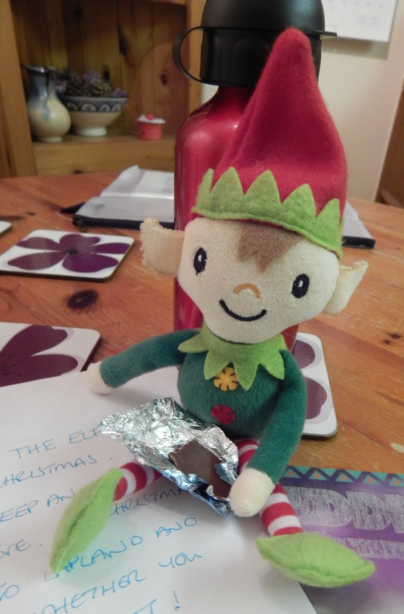 Berry the Elf #elfontheshelf