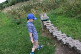 Exploring Rosliston Forestry Centre