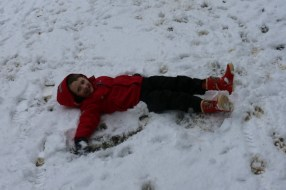 Snow Angel Salcey Forest