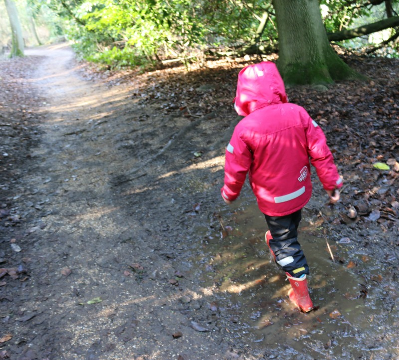 Puddles at Waddesdon Manor