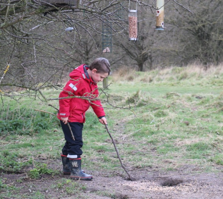 Picking up sticks at Calke Abbey