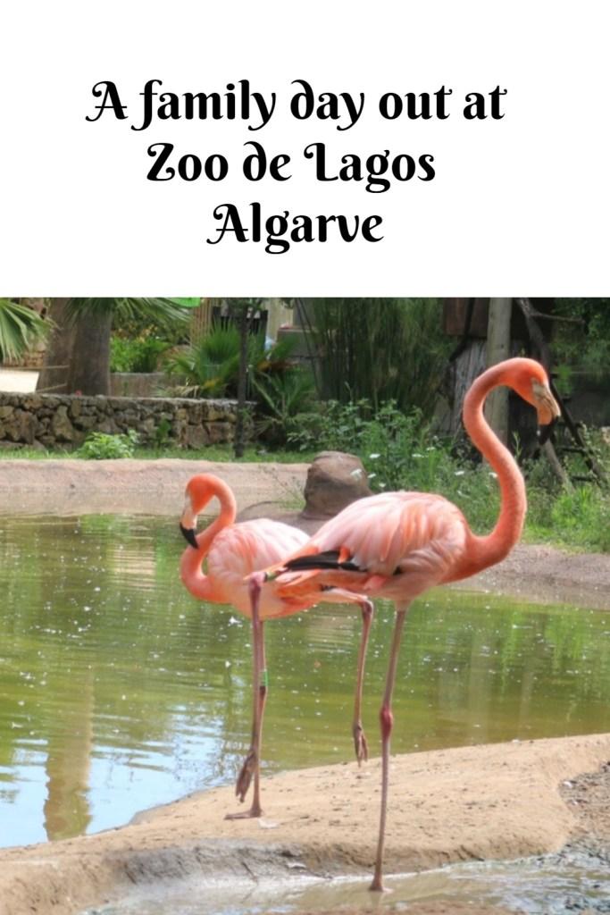 Zoo de Lagos in the Algarve