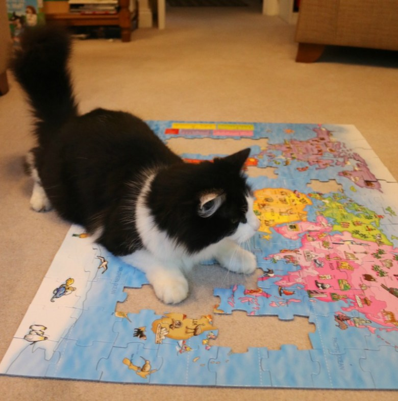World map puzzle from orchard toys is a great educational tool world map puzzle from orchard toys gumiabroncs Image collections