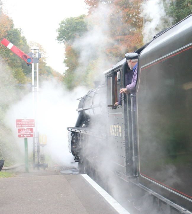 Enjoying the Wizard Express on The Watercress Line