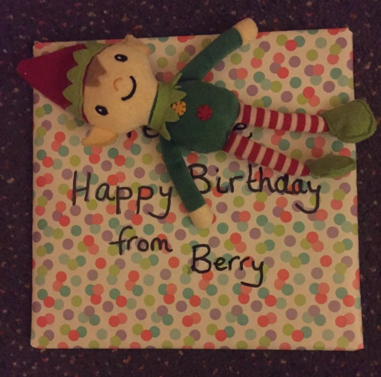 Berry the Elf in 2016 - days 1-12
