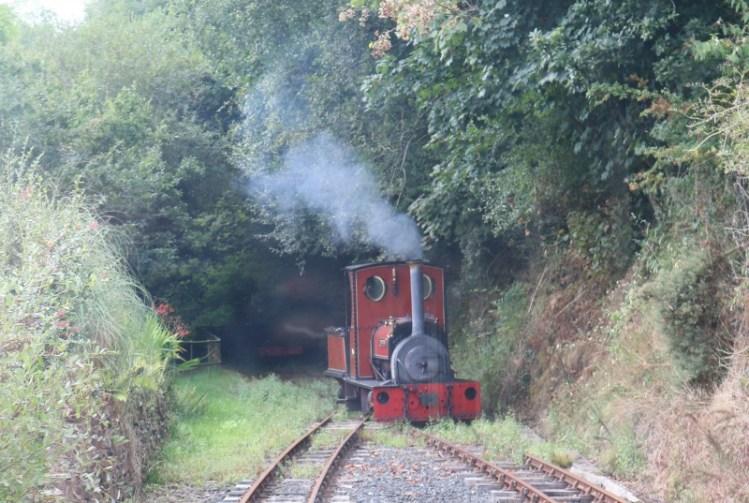 Enjoying the Launceston Steam Railway