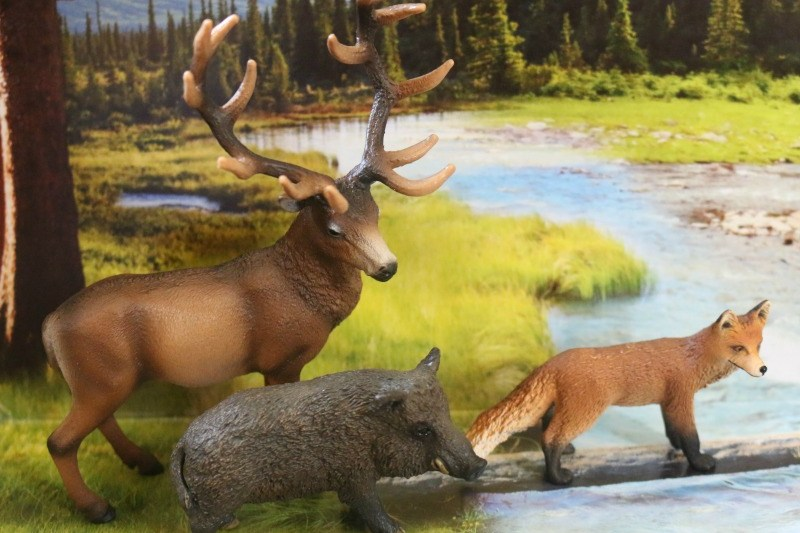 Schleich European Forest Dwellers set