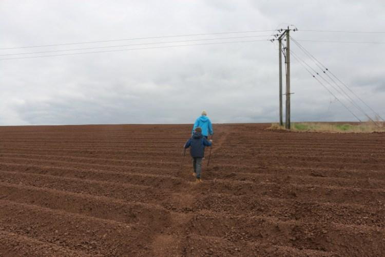 Furrowed Field - My Sunday Photo 140517