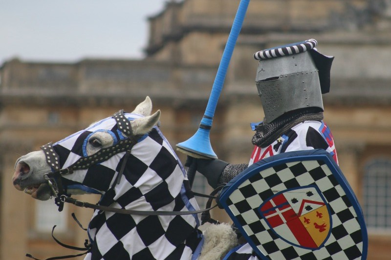 Knight about to charge - My Sunday Photo 070517