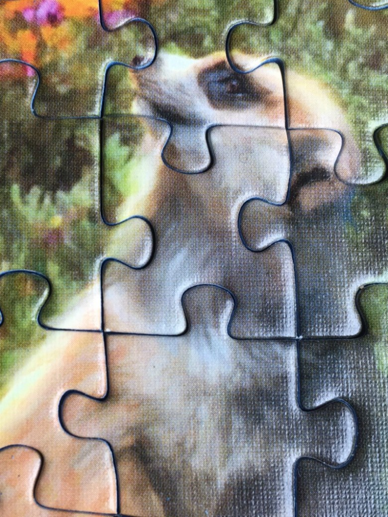 ravensburger mischievous meerkats 500 piece jigsaw puzzle over