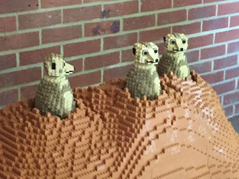 Enjoying Marwell Zoo and the Great Bricks Safari 6a