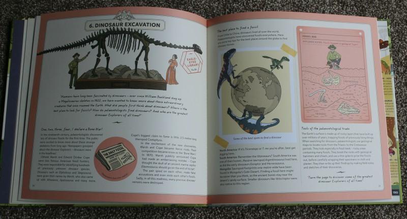 Explorer Dinosaurs!