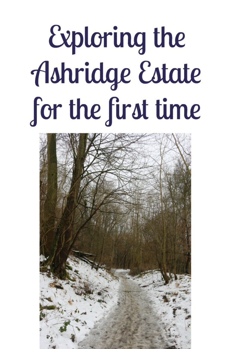 Exploring the Ashridge Estate for the first time