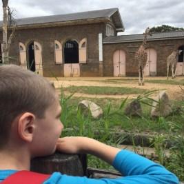 Exploring ZSL London Zoo 13