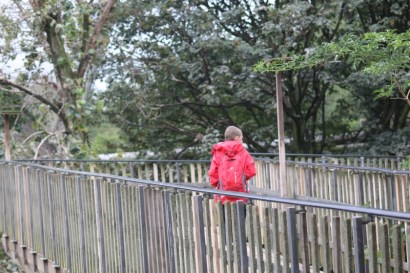 Exploring ZSL London Zoo