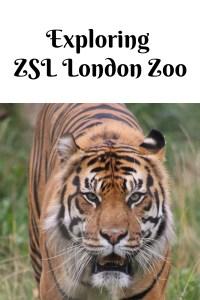 Exploring ZSL London Zoo