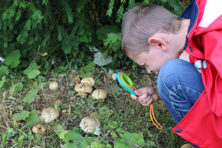 Exploring outdoors with Hape