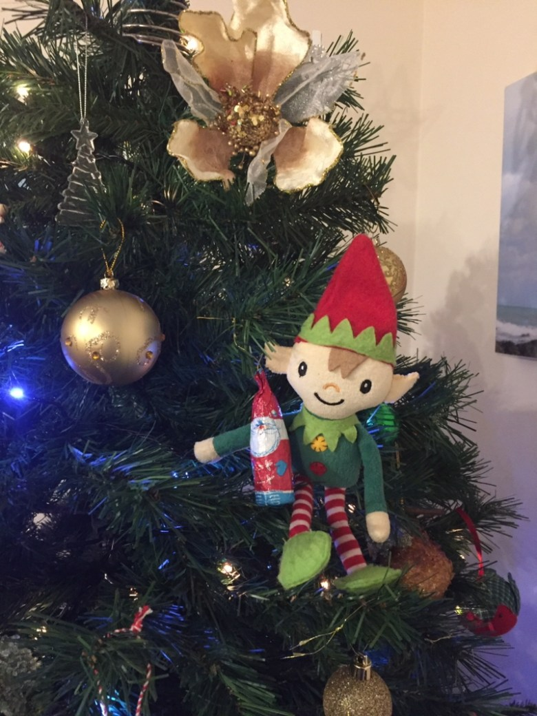 Berry the Elf in 2018 - day