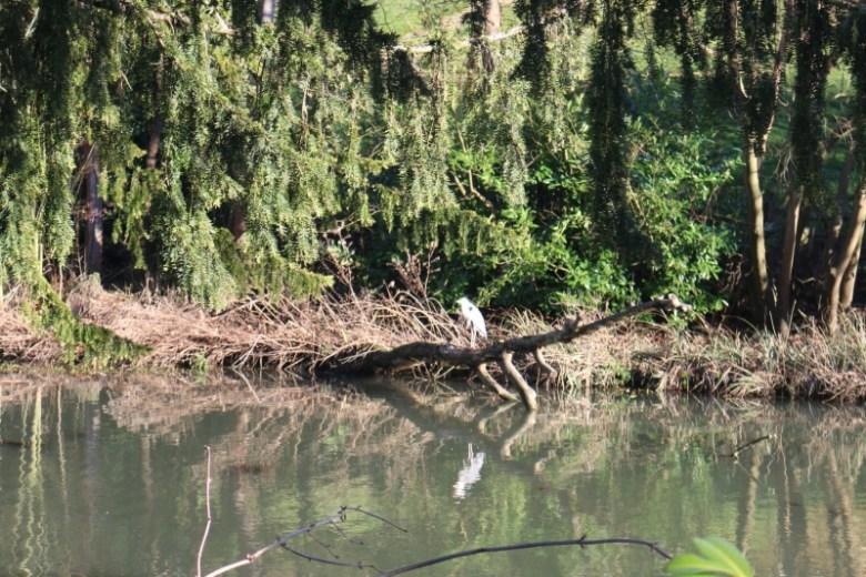 Exploring Adderbury Lakes Nature Reserve