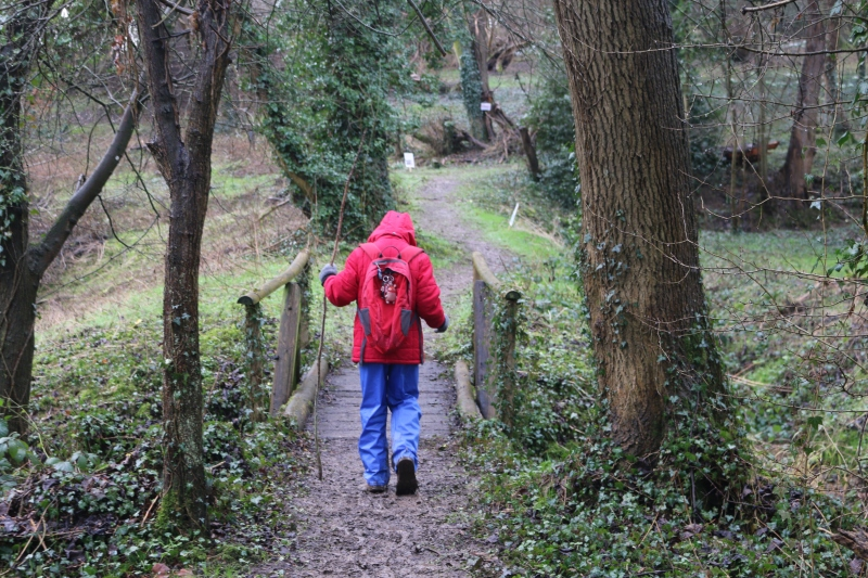 Exploring Stars and Snowdrops at Hanwell Castle