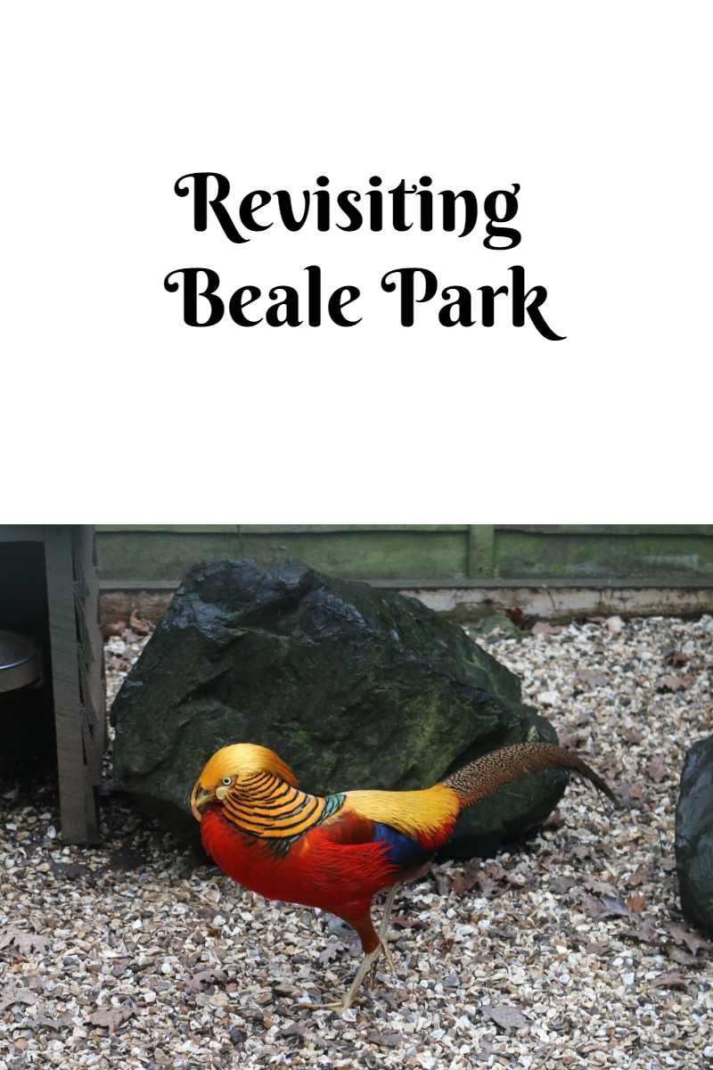 Revisiting Beale Park
