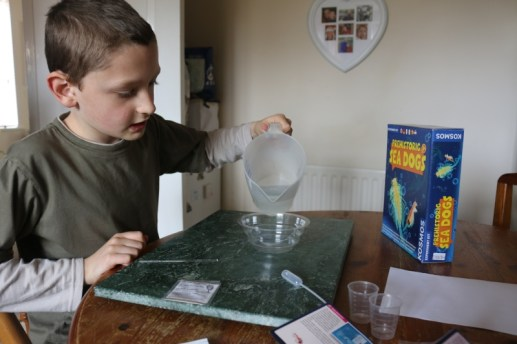 Growing knowledge with Thames and Kosmos Science Kits