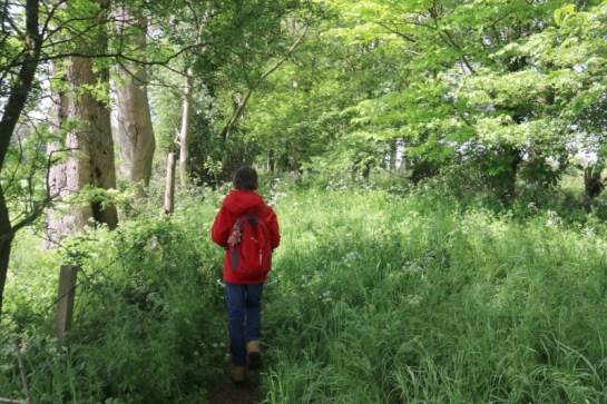 Exploring the Lower Heyford Circular Walk 19
