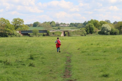 field with boy