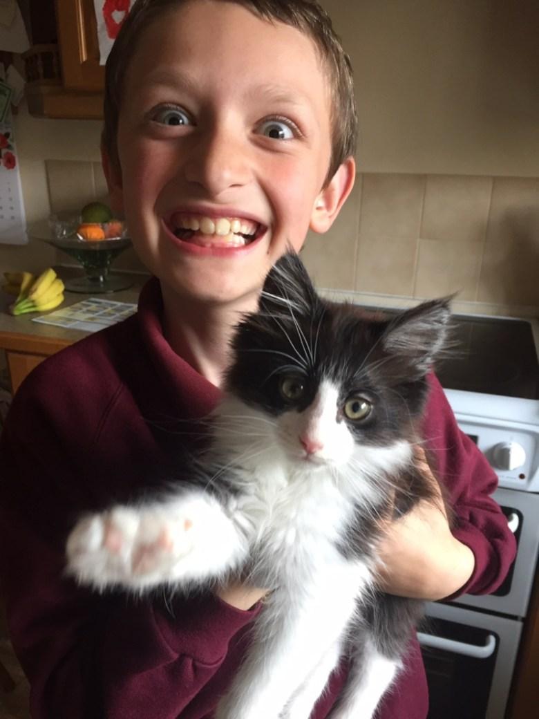 boy and kitten