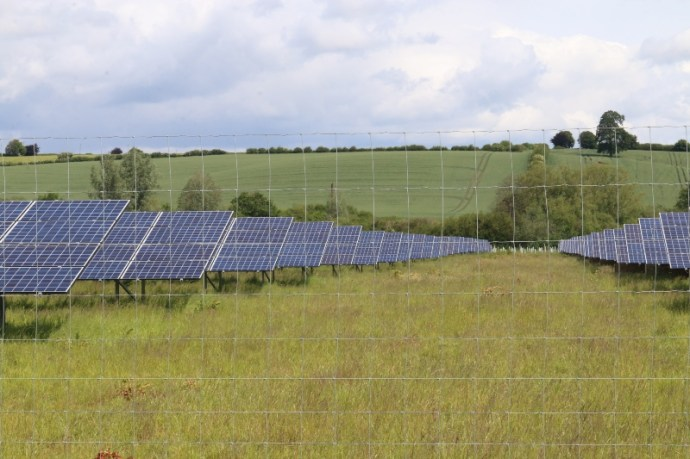 Hill Farm is a small mixed family farm producing a variety of crops including wheat, oil seed rape and barley. We have a herd of 100 South Devon cross beef cattle. We have 26 acres of solar panels which produce enough energy to supply 1,500 homes.