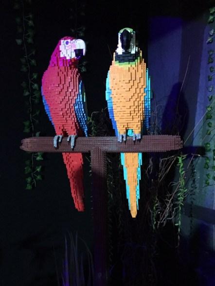 Lego macaws