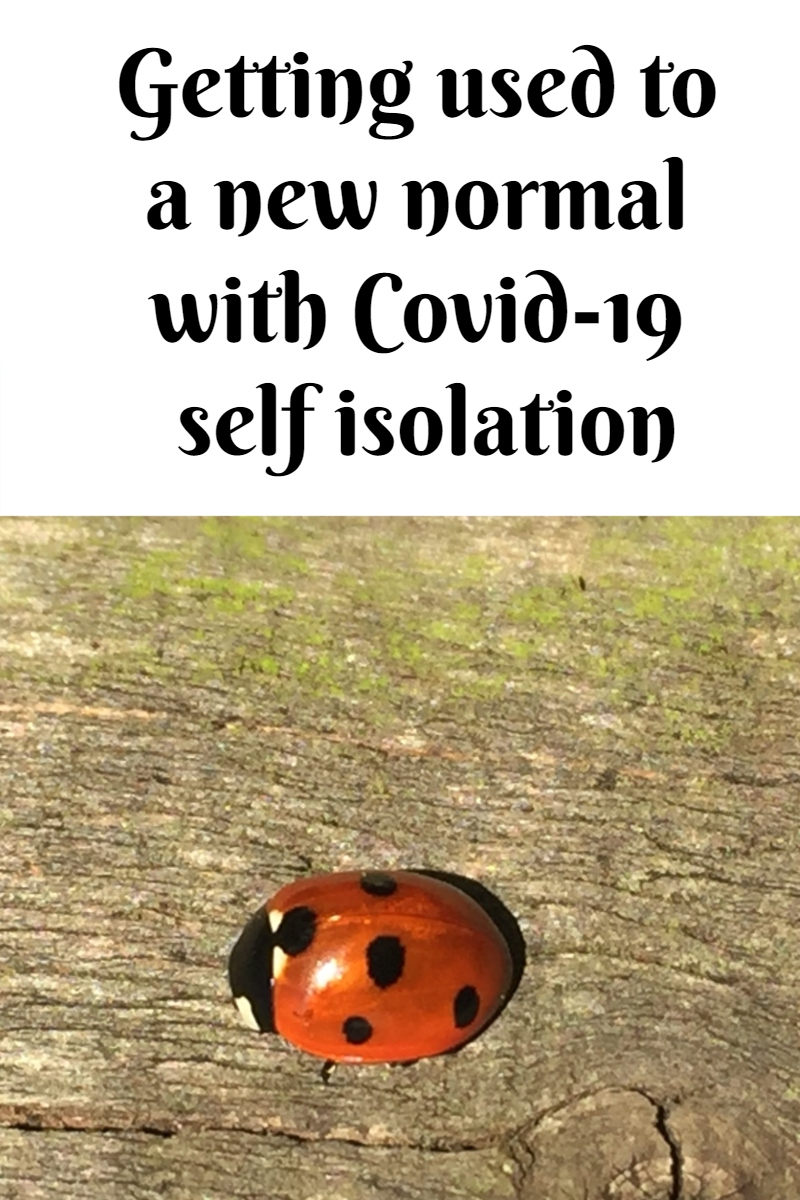 Getting used to a new normal with Covid-19 self isolation