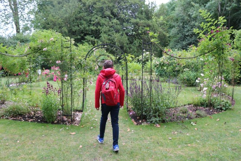 Lacock Abbey rose garden