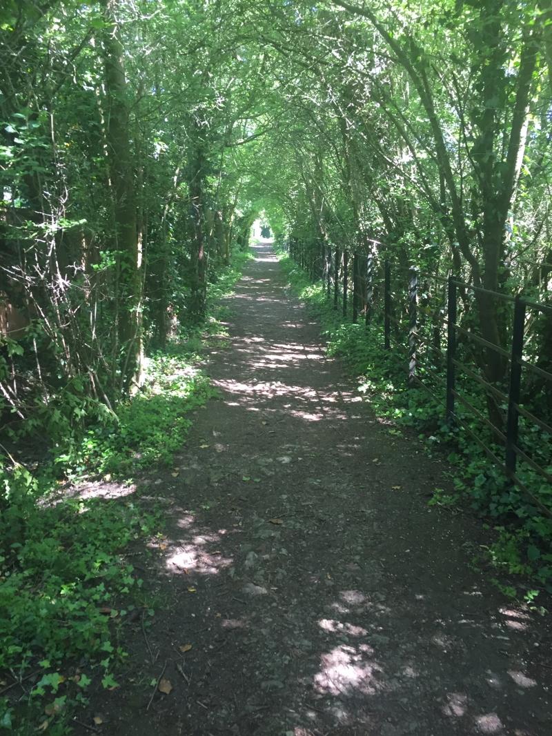 Exploring footpaths on our doorstep - Launton