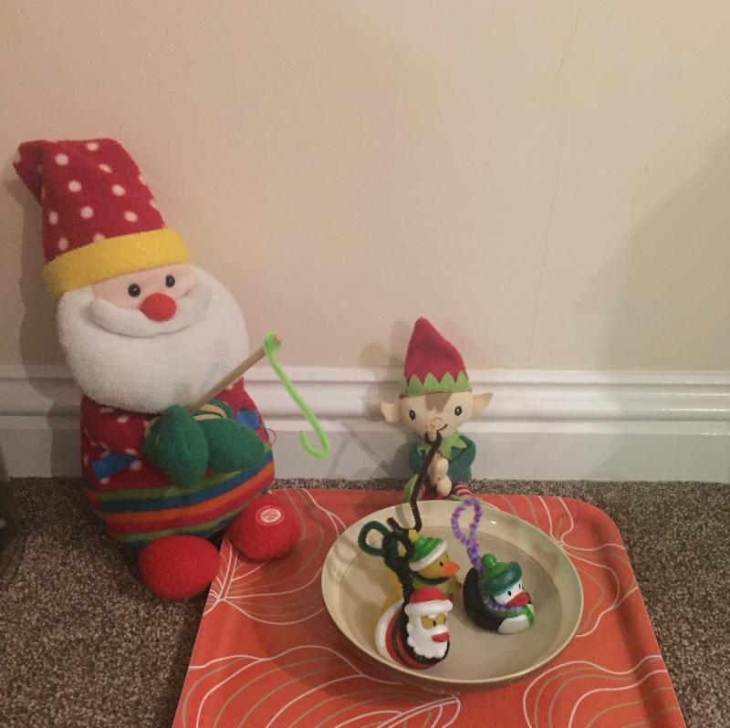 Elf Antics with Berry the Elf 2020