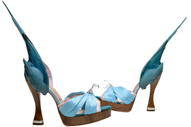 Caroline-Groves-b-1959-Parakeet-shoes-Photography-by-Dan-Lowe.nocrop.w670.h447