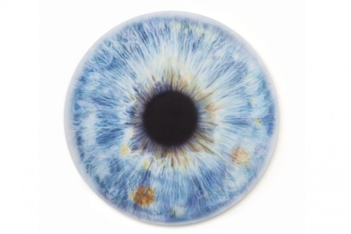 gallery-1439997270-hbz-stella-eye