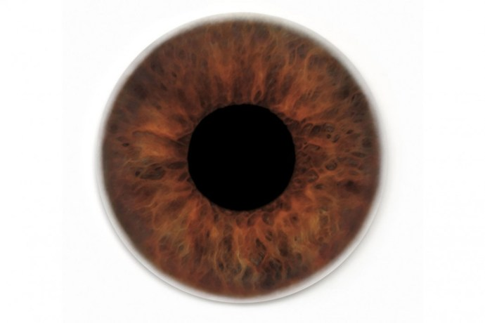 gallery-1439994048-hbz-karl-eye