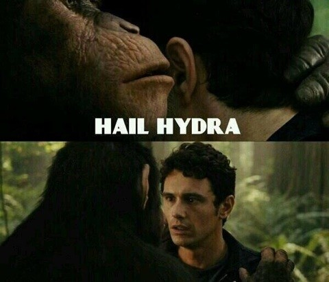 hailhydra13