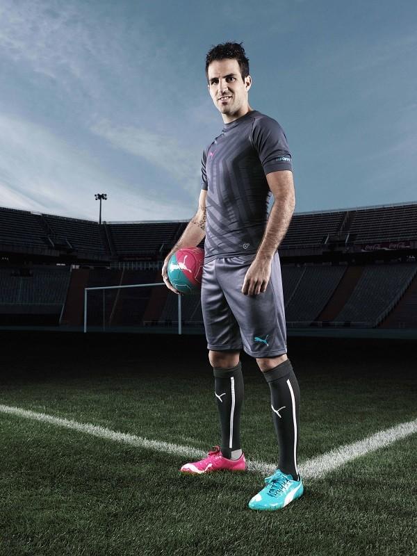 西班牙隊中鋒也是現今世界盃冠軍隊球員Cesc Fàbregas