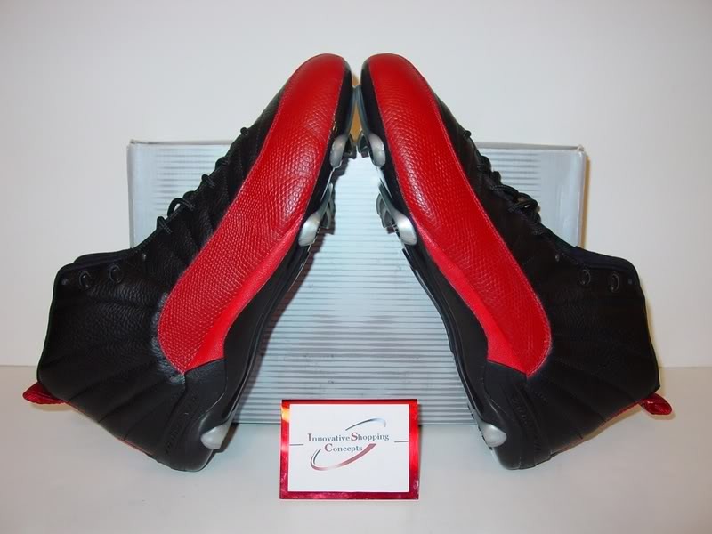 air-jordan-12-warren-sapp-pe